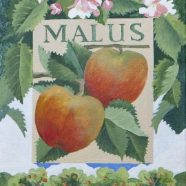 jennifer_abbott_fruit_paintings_08